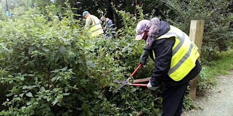 Sherland Road gardens-  Practical Conservation Tasks tickets