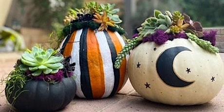 Spooky Succulent Pumpkin Workshop tickets