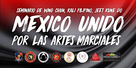 MEXICO UNIDO POR LAS ARTES MARCIALES - JKD, WING CHUN, KALI FILIPINO entradas