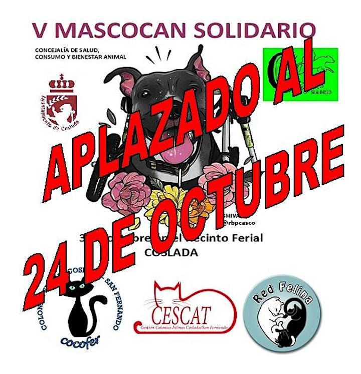 Imagen de V MASCOCAN SOLIDARIO DE COSLADA