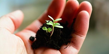 Learn How To Make Seeds Sprout! tickets