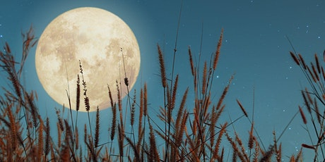 VIRTUAL Full Moon Sound Healing Experience tickets