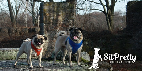 October Intermediate Obedience at Spontaneous Celebrations tickets
