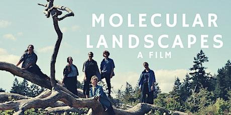 molecular landscapes: a film tickets
