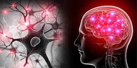 Better Brain The Tiny Habits Way tickets