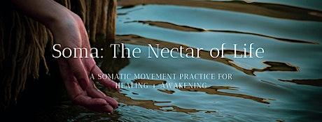 Soma:  Embodied Somatic Practice for Healing + Awakening tickets