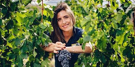 Organic Marche Wine Tasting with Tenuta Santi Giacomo e Filippo tickets