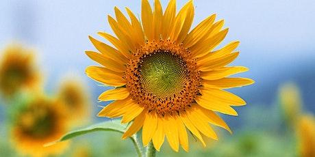 The Sunflower Gala tickets