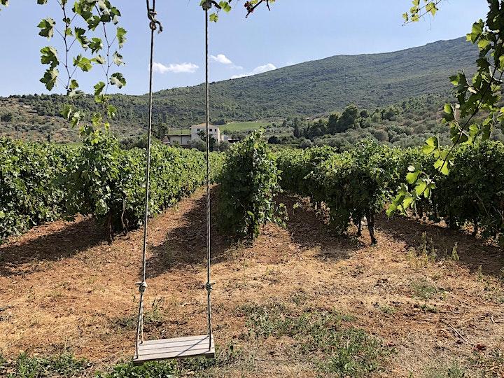 Wine tasting: A dozen shades of Agiorgitiko image