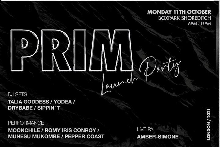 PRIM Launch Event image