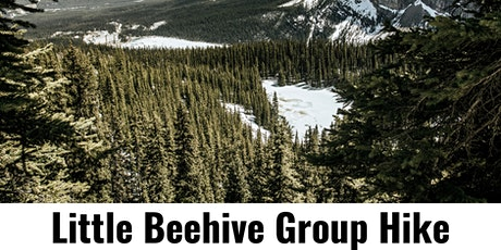 Little Beehive Group Hike tickets