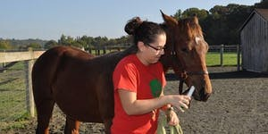 Advances in Equine Research: Understand drug...