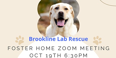 Brookline Lab Rescue Foster Home Q&A tickets