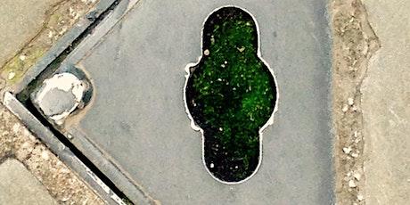 Manchester, Botanical City: Plants, Stories, Lives (virtual) tickets
