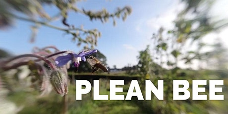 Plean Bee and Kilrooskey Lough Cluster tickets