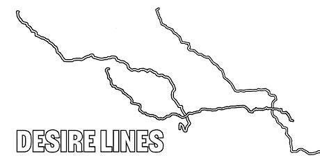 DESIRE LINES Inclusivity: mandla rae tickets