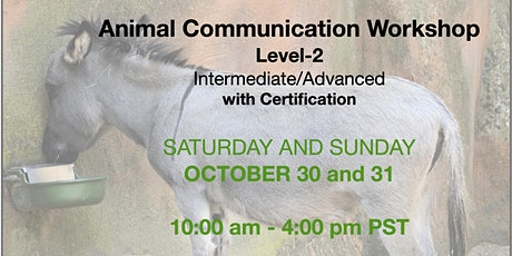 Animal Communication Workshop - Level Two tickets