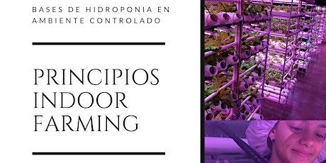 PRINCIPIOS DE INDOOR FARMING) boletos