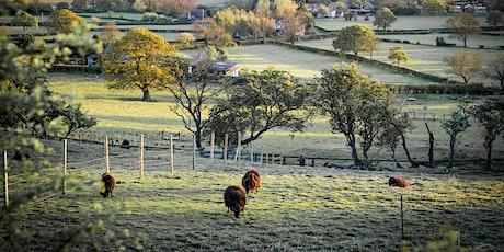 UK Farm Soil Carbon Code Stakeholder Workshop tickets
