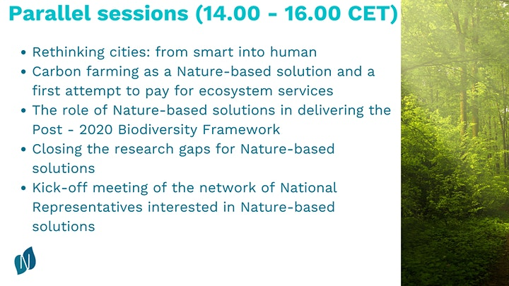 Network Nature: Achieving the EU Green Deal through nature-based solutions image