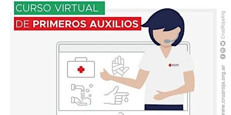Primeros Auxilios - Online- Cruz Roja Argentina entradas