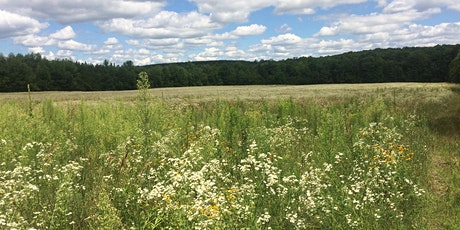 Utopia Conservation Area Pollinator Planting tickets