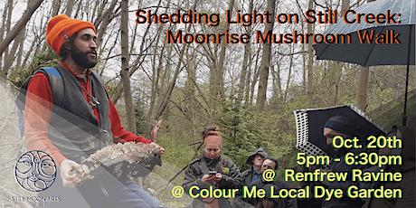 Shedding Light on Still Creek - Moonrise Mushroom Walk tickets