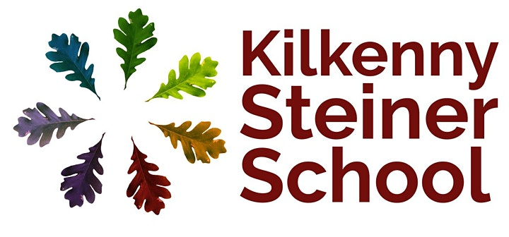 Kilkenny Steiner Secondary School  Project Taster Workshop image