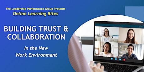 Building Trust & Collaboration (Online - Run 20) tickets