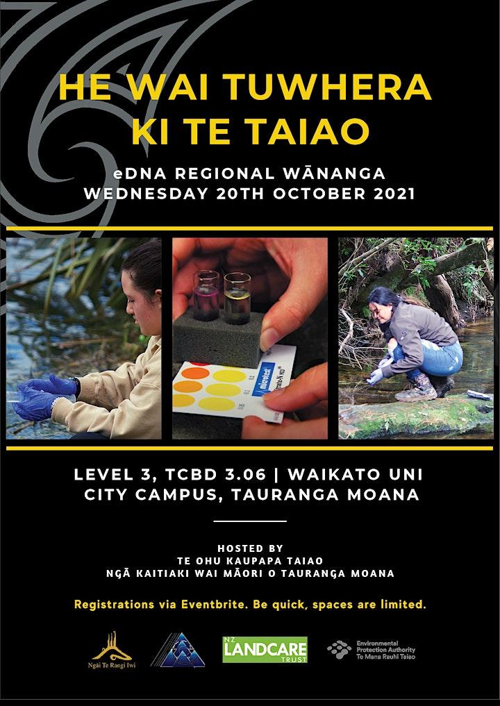 Making your data meaningful - a Wai Tūwhera o te Taiao Kaikohe image