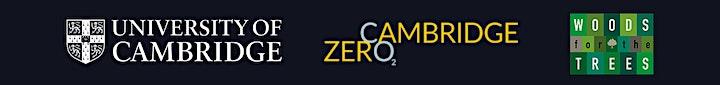 Cambridge Zero - The New Wood Age: a new vision image