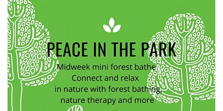 Peace in the Park -  Mid Week  Autumn and Winter  Mini Forest Bathe Walks tickets