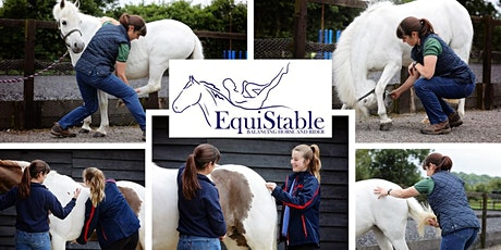 EquiStabilising Exercises – Practical AFTERNOON COURSE for Horse Owners tickets