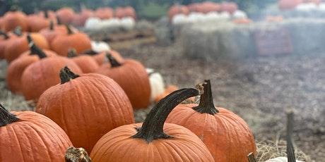 October Pumpkin Patch at the Farm tickets