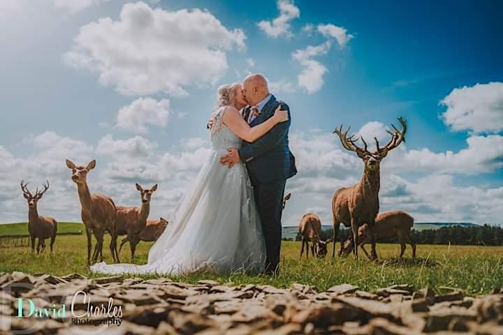 Thornton Hall Wedding Open Day image