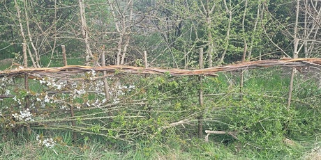 Learn to Lay Hedgerows with The Conservation Volunteers tickets