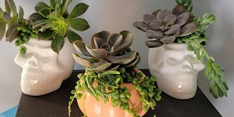 Spooky Succulent Workshop at 3 Stars Brewing tickets