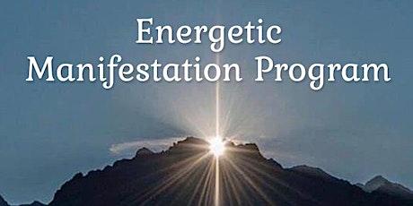 6 Month Energetic Manifestation Program tickets