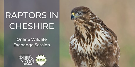 Raptors in Cheshire - online talk tickets