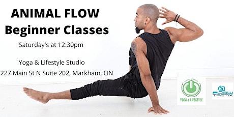 Animal Flow - Beginner Movement Class tickets