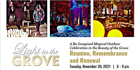 Light in the Grove Re-Imagined Magical Experience 2021 tickets