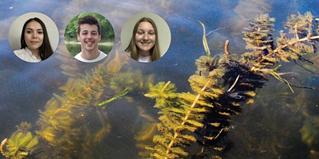 Catskill Research Updates: Freshwater Invasives & Forest Regeneration tickets