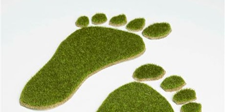 'Calculating carbon footprints for new working patterns' tickets