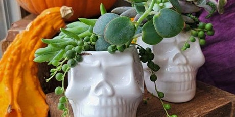 Spooky Succulent Workshop at Fells Pt Cultivated Creations tickets