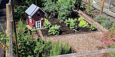 Shared Spaces: Creating your Edible Garden (webinar) tickets