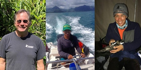 TWS Hawaii Virtual BioBlitz October: Seabirds tickets