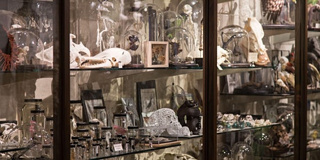 Creating Curiosities at NYC's Evolution Store and Fabrication Workshop tickets
