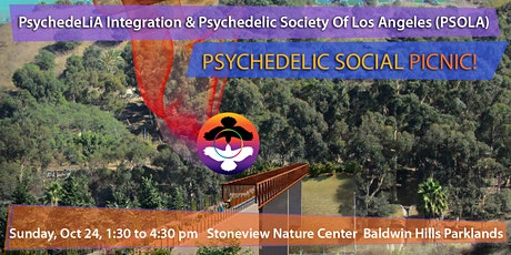 PSYCHEDELIC SOCIAL PICNIC tickets