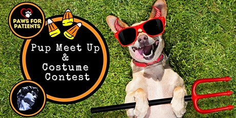 Hollywood Dog Meet Up & Costume Contest tickets