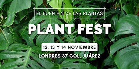 ❀ Plant Fest - 8va-Edición ❁ entradas